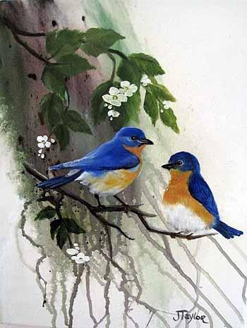 Bluebirds II
