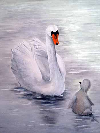 Ugly Duckling or Swan Indeed